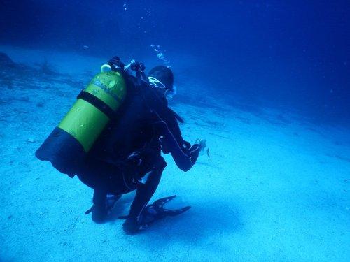 photo matériel de plongée sous-marine et snorkeling ; combinaisons cressi sub